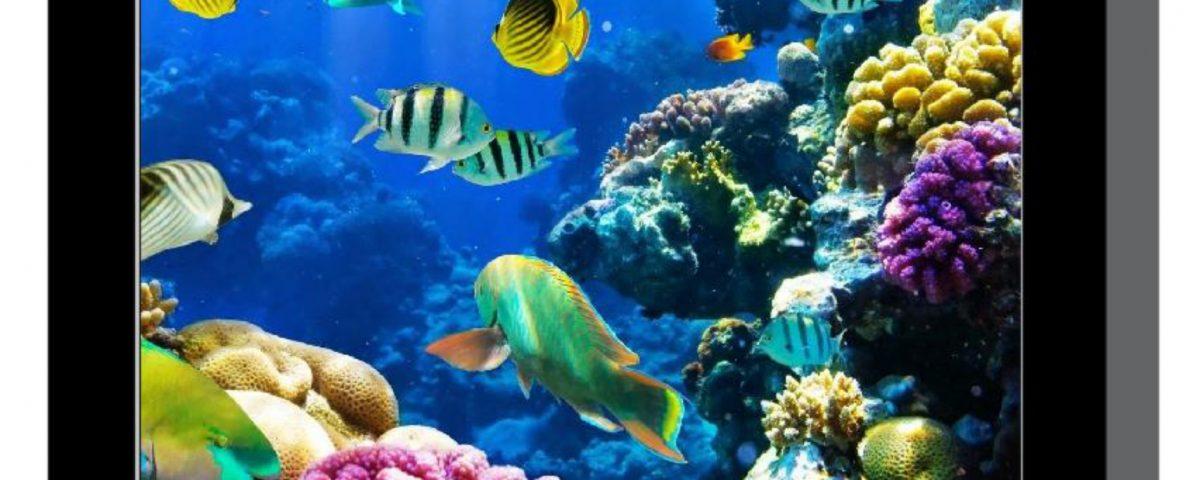 diseño de lápida acuario